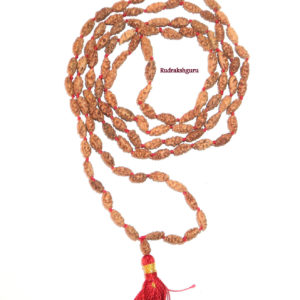 Shiva Netra Mala - 109 Beads