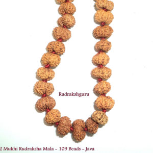 Java Rudraksha Malas and Bracelets