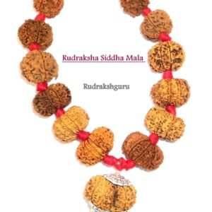 Siddha Mala - Collector Size