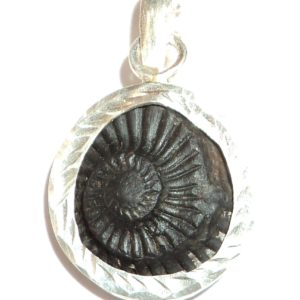 Shaligram Pendants In Silver