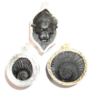 Shaligram Rings And Pendants