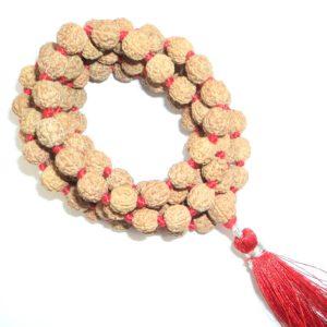 Rudraksha Pathri Beads Mala - 109