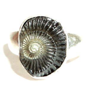 Shaligram Rings