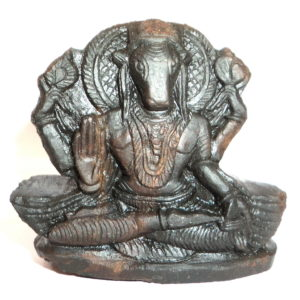 Hygrive Murti Carved on Sudarshan Shaligram
