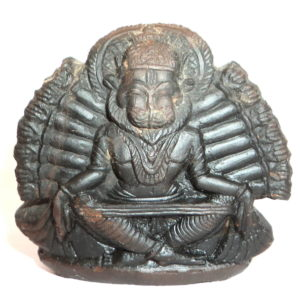 Yoga Narsimha Murti Carved on Sudarshan Shaligram