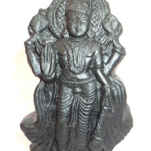 Satya Narayana Murti Carved on Sudarshan Shaligram