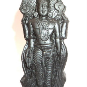 Tirupati Balaji / Srinivasa / Venkatewara Murti Carved on Natural Sudarshan Shaligram