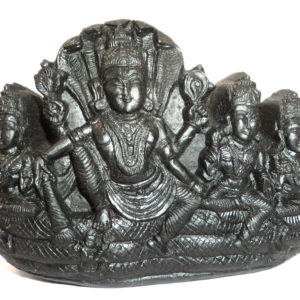 Lord Vishnu With Sridevi , Bhudevi and NeelaDevi Carved on Natural Sudarshan Shaligram