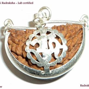 Collector 1 Mukhi Beads