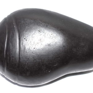 Shankh / Conch Carved On Natural Shaligrams